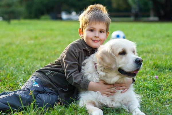 Reasons why a dog is a great companion for your children