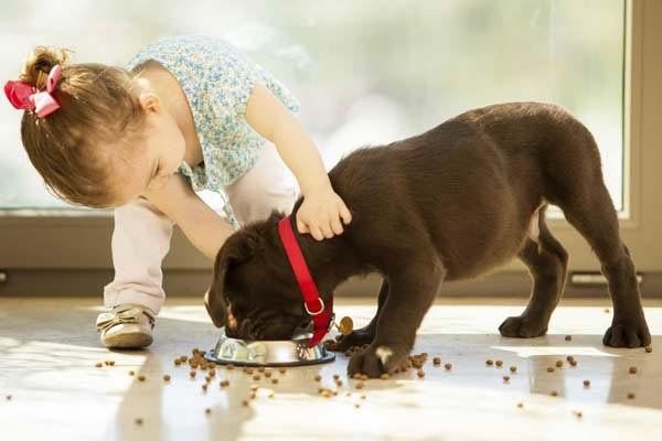Perks of Children and Pets Growing Up Together